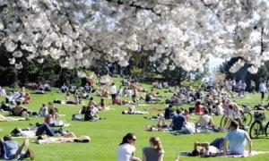 Warm Spring Park day